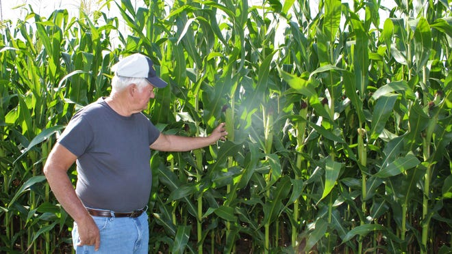 Robert Dotterer, a Wayne County farmer, saw a dramatic decline in prices for corn during the coronavirus pandemic. He is one of many area farmers who took advantage of the Coronavirus Food Assistance Program.