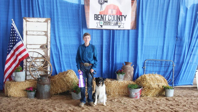Tayton Coulter and his border collie mix Shiloh took home grand champion status at the Bent County Fair dog show Wednesday in Las Animas.