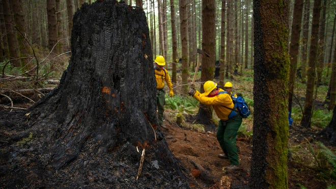 A fire crew from the Oregon Air National Guard works to dig out hot spots on the fire lines of the Holiday Farm Fire, east of Springfield, Ore., Monday Sept. 21, 2020. Members of Massachusetts Task Force 1, an urban search and rescue team located in Beverly and comprised of police, fire, EMS and civilians and members, helped fight the fires in Oregon.