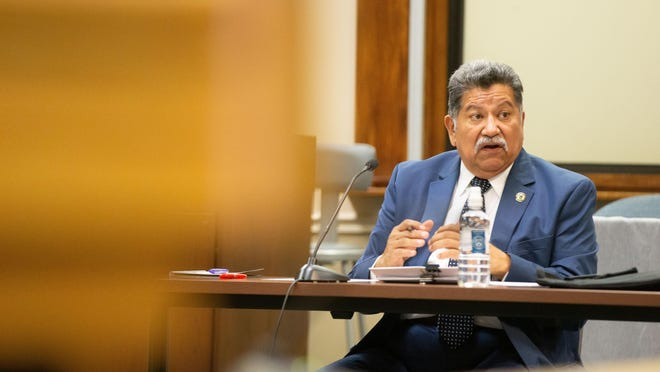 Councilmember Mike Padilla will serve as deputy mayor for 2021.