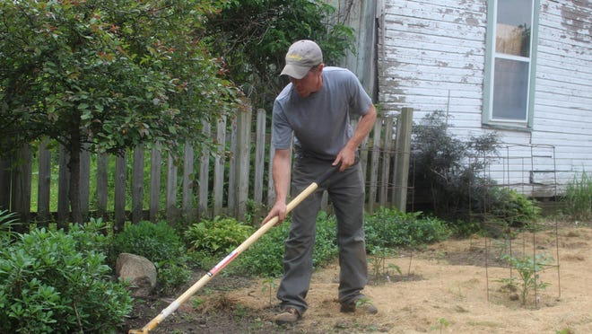 """Chris Williams weeds in his garden during the evening of June 4 in Adrian. Williams is one of the organizers of a group of Adrian residents who want to keep backyard chickens as a food source. """"… It's always been (about) having fresh eggs and providing for my family,"""" Williams said."""