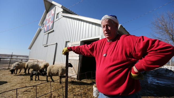 Dwight Dial raises sheep shown here Monday March 9, 2015, at his Calhoun County farm near Lake City, Iowa. Calhoun is one of three counties, along with Buena Vista and Sac, Des Moines Water Works plans to sue for high levels of nitrates. Dial wonders why the Des Moines utility is looking to three small Iowa counties to pay for its next nitrate removal facility.