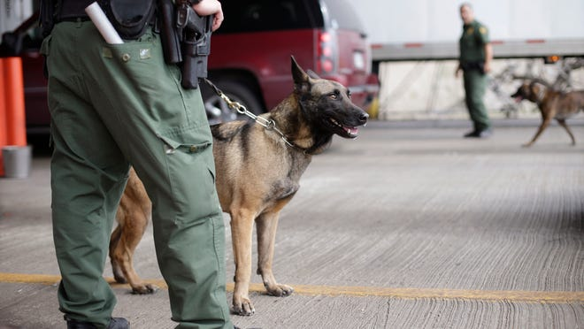 U.S. Customs and Border Patrol agents and K-9 security dogs keep watch at a checkpoint station, in Falfurrias, Texas.