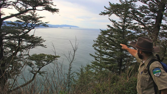 Oregon state park ranger Travis Korbe points out an area where whales might be spotted from the Cape Trail at Cape Lookout State Park south of Tillamook. The new Office of Outdoor Recreation will hire a director in the coming months.