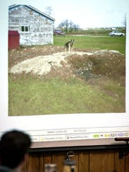 A photo of the burn pit with Steven Avery's dog, Bear,
