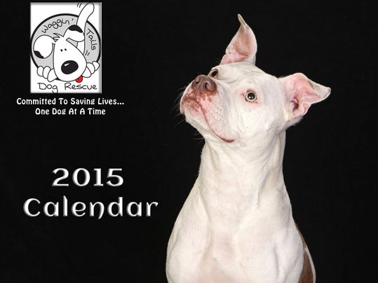 1 FRM animal rescue calendar