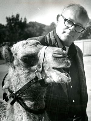 Gerald Kloss meets his match in the form of a young camel at the Milwaukee County Zoo in this photo, published in The Milwaukee Journal July 18, 1973.