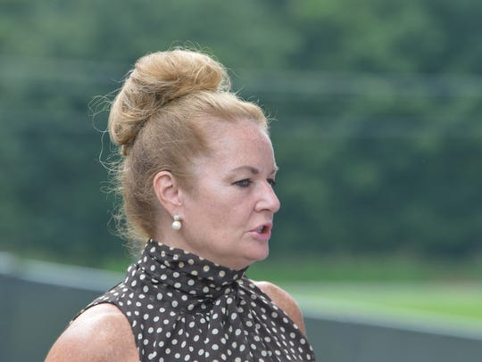Putnam County Executive MaryEllen Odell did not return