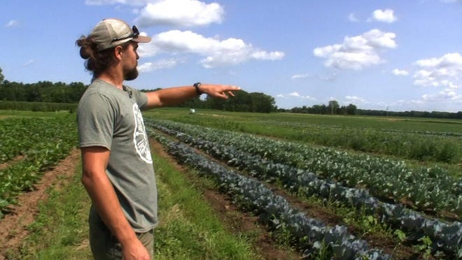 Luke Wojcik, owner of Twin Elm Gardens in Pulaski, points to rows of vegetables growing on his farm. The farmer sells his locally-grown produce to area restaurants.