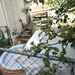 Inspectors sweep for rats on Green Bay's west side
