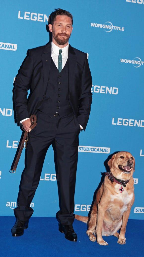 Tom Hardy Red Carpet Dog Woody