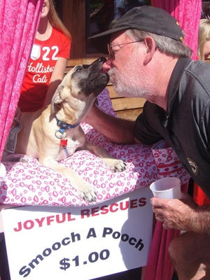 """Wet kisses will be available at Joyful Rescue's """"pawsitively"""" adorable kissing booth, featured at this weekend's Dog Day Afternoon Fundraiser at O'Loughlin's."""