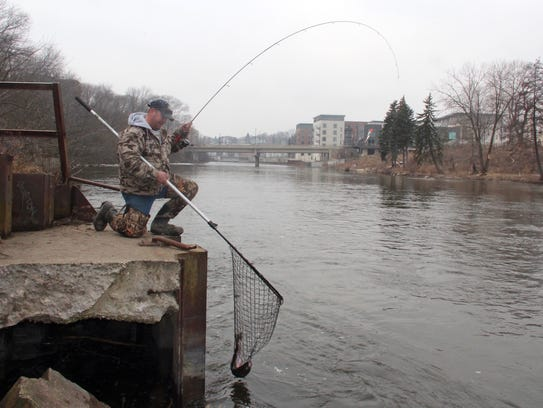 Smith brew city hosts run of steelhead for Milwaukee river fishing