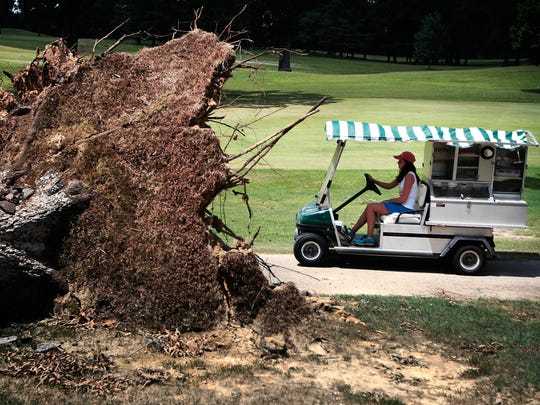 Cara Carpenter passes a downed tree while driving the beverage cart for players on Aug. 2, 2015, the last official day of play on the old North Course at Colonial Country Club.
