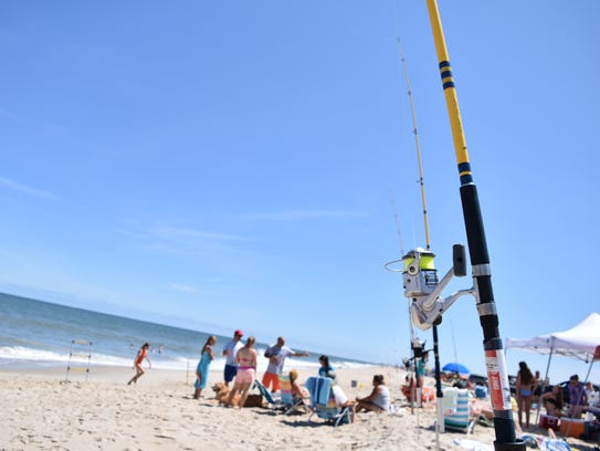 Delaware's beaches are popular among surf anglers.