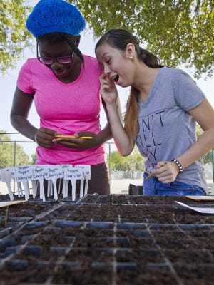 Trafalgar Middle School students Doodland Martial, 12, and Kimmie Balch, 13, react after finding an earth worm in one of their small planting cups earlier this month.