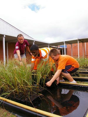 An AmeriCorps NWF Environmental Steward teaches students at Laurel Hill School to care for salt marsh plants as part of the Grasses in Classes program.