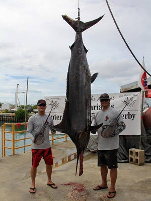 The 339.5 pound marlin that James Borja caught to win the marlin category of the 21st Annual Guam Marianas International Fishing Derby, held  Sept. 17-18.