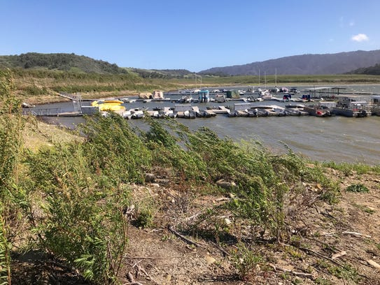 Recent drought lowered water levels in Southern California's Lake Casitas, prompting debate about the future of the lake and water use in nearby Ojai.