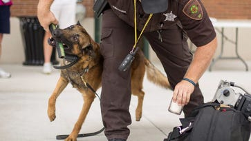 Report: No human error in K9's death at PGA