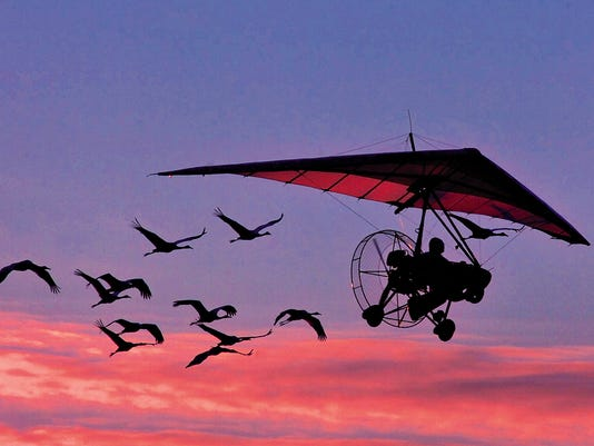 Investing: Market timing is for the birds