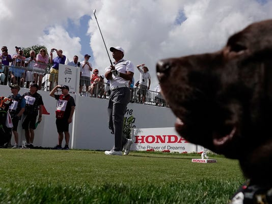 """Tiger Woods watches his tee shot on the 17th hole during the Pro-Am for the Honda Classic golf tournament, Wednesday, Feb. 21, 2018, in Palm Beach Gardens, Fla. At right is Birdies for the Brave mascot """" Fowler."""" (Joe Cavaretta/South Florida Sun-Sentinel via AP)"""