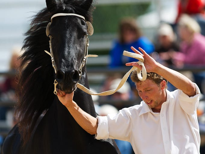Paul Miller of Black Earth runs with Lisbeth, a Friesian mare, during the Midwest Dutch Friesian Keuring inspection at Marshfield Farigrounds Park, Monday, Sept. 22, 2014. Lisbeth is owned by North Ster Friesians of Wausau and Miller was helping run horses during the inspection. The Midwest Dutch Friesian Keuring inspection is put on by the Great Lakes Friesian Horse Association and is judged by Will Thijssen and Willem Sonnema, who traveled from Amsterdam to inspect the breed which is native to Friesland, Netherlands. For a video from the inspection go to marshfieldnewsherald.com.