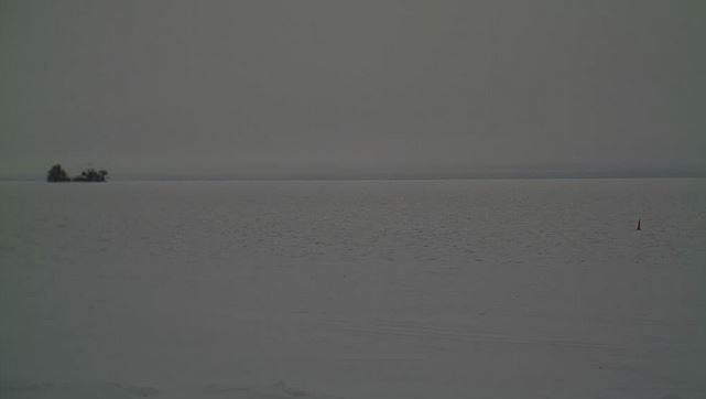 Lyback's Ice Fishing webcam  points northwest, with Spider Island in the left of the frame. On an average year, fish houses would have popped up by now.