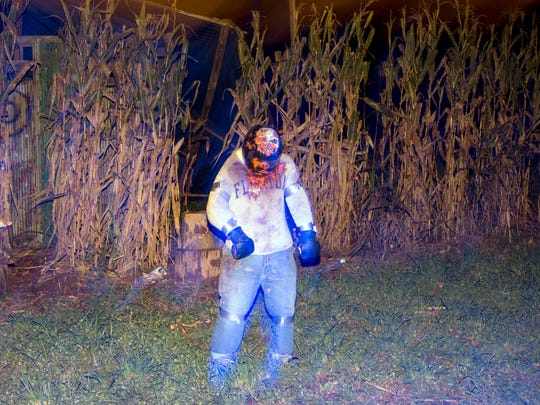 A zombie wearing a Florida sweater emerges from the fields during Dead Man's Farm's Zombie Hunters Paintball on Thursday, October 16, 2014.