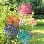 Become a better gardener in 2016 by visiting the gardens of others, as well as our excellent public gardens, for fun, colorful and creative ideas like spray-painted alliums in the gardens of Don and Mary Sanders, Winchester.