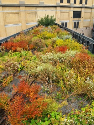 """The High Line is known as New York's """"park in the sky."""""""