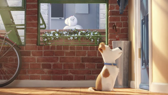 """A scene from """"The Secret Life of Pets."""" The movie opens Thursday at Regal West Manchester Stadium 13, Frank Theatres Queensgate Stadium 13 and R/C Hanover Movies."""