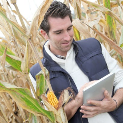 Man standing in middle of field corn with  digital tablet