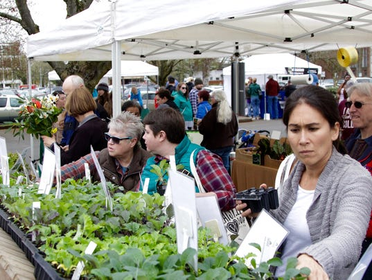 Visitors thumb through Minto Island Growers herbs