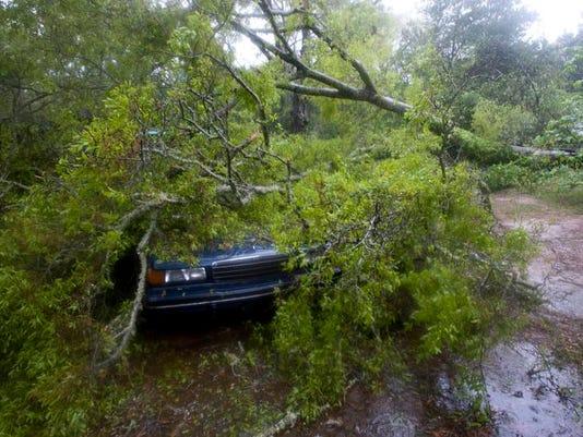 -Downed Tree Myrtle Grove_2.jpg_20140407.jpg