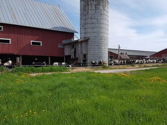 Home Acres Farm_New Freestall Barn