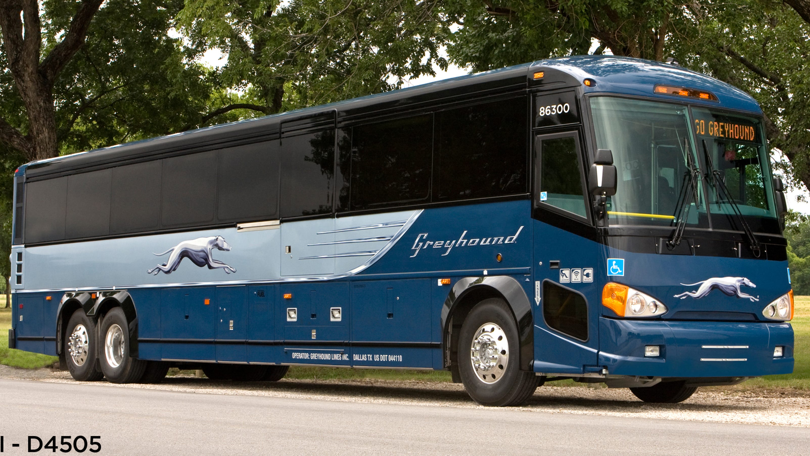 Blue Bathrooms Greyhound Remakes Itself For A New Generation