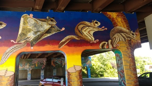 Flying squirrel lands under interstate 240 for Asheville mural project
