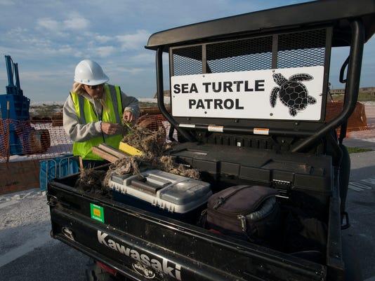 Sea Turtle Patrol