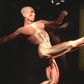 Body Worlds comes to Maine