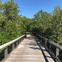 Discover kayaking trail, secluded beach at St. Lucie Inlet Preserve State Park | Laurie's Stories