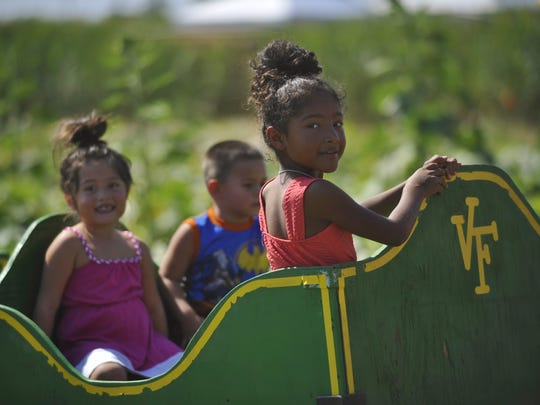 Vossler Farms corn maze and pumpkin patch is open now