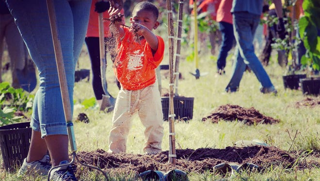 Everyone can get in on the fun when it is tree-planting time.