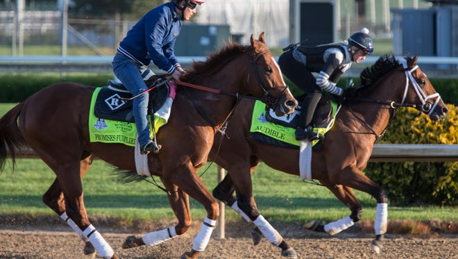Kentucky Derby entrant Audible galloped past Promises Fulfilled during morning workouts at Churchill Downs. May 1, 2018.