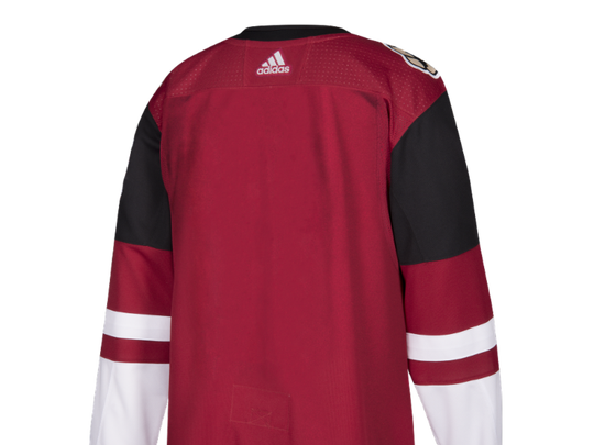 Back of the Coyotes' new jersey.