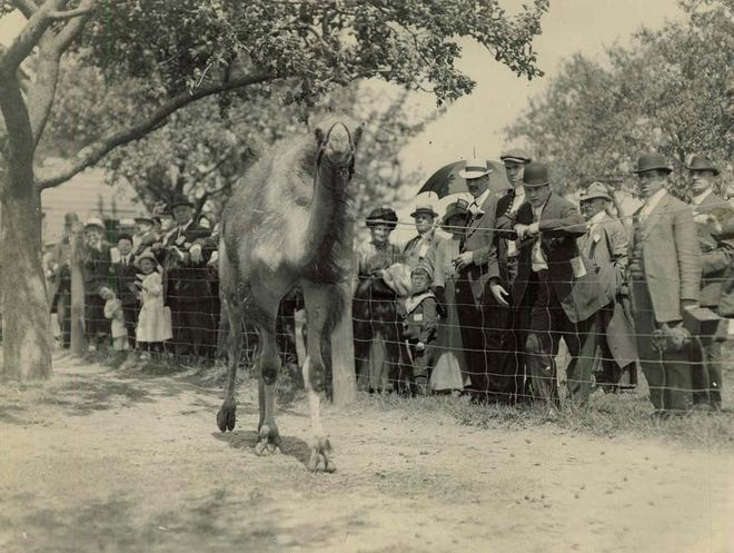 Crowds turned out in 1912 for the opening of Durand-Eastman Zoo.