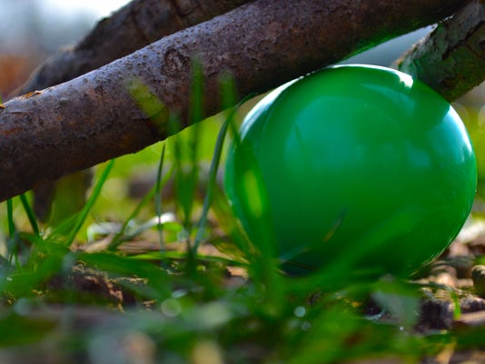 635945960711299458-best-egg.JPG