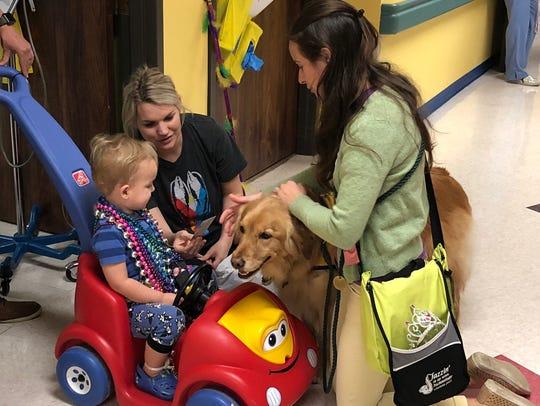 Komfort Krewe Pet Therapy volunteers Elizabeth LaPointe