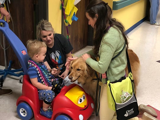 Komfort Krewe Pet Therapy volunteers Elizabeth LaPointe and Olive pause to share a special Mardi Gras treat with Asher DeHart, 2, and his mom, Kelsie DeHart, during the sixth annual Mardi Gras parade at Women's & Children's Hospital Friday, Feb. 9, 2018.