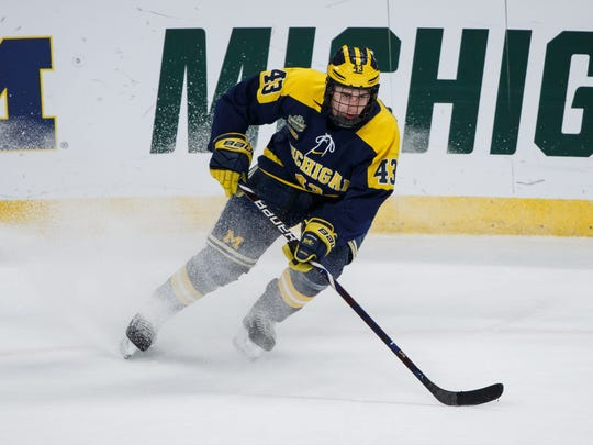 Apr 5, 2018; St. Paul, MN, USA; Michigan defenseman